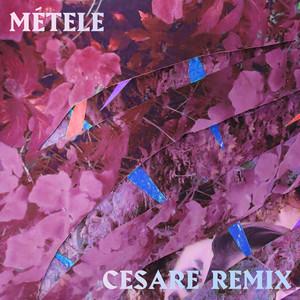 Métele (Cesare Remix)
