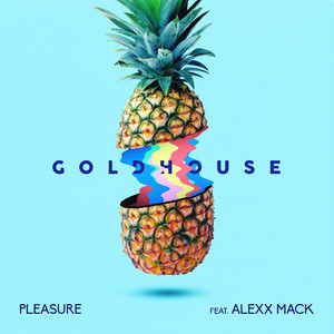Pleasure (feat. Alexx Mack)