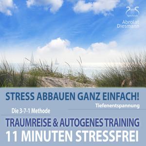 11 Minuten Stressfrei - Stress abbauen ganz einfach! Traumreise & Autogenes Training Audiobook