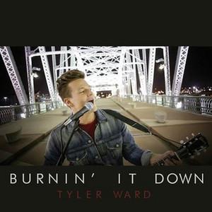 Burnin' It Down