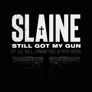 Still Got My Gun