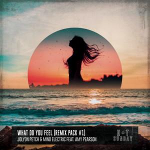 What Do You Feel - Elektrik Disko Extended Remix