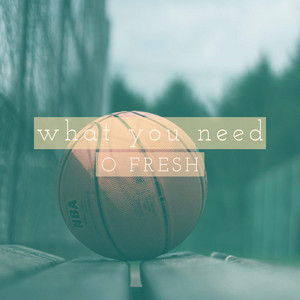 What You Need by O Fresh