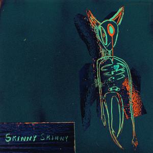 Skinny Skinny - Ashton Irwin