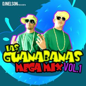 Las Guanabanas Mega Mix, Vol. 1
