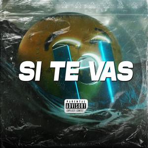 Si Te Vas (Remix)