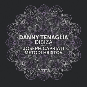 Dibiza - Metodi Hristov Remix cover art