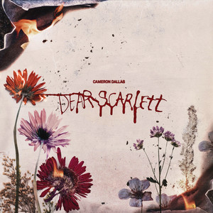 Dear Scarlett cover art