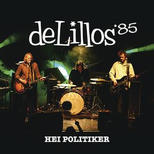 Hei Politiker (e-release)