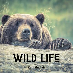 Wild Life by Keir Sinclair