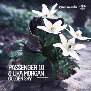 Golden Sky (Remixes)