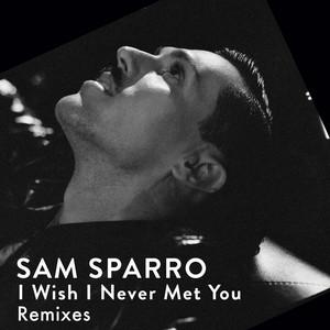 I Wish I Never Met You (Remixes)