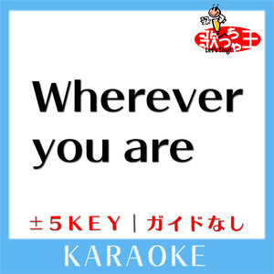 Wherever you are(ガイド無しカラオケ)[原曲歌手:ONE OK ROCK]