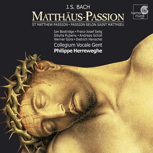 """Matthäus-Passion, BWV 244, Zweiter Teil: 49. Aria (Sopran) """"Aus Liebe will mein Heiland sterben"""""""