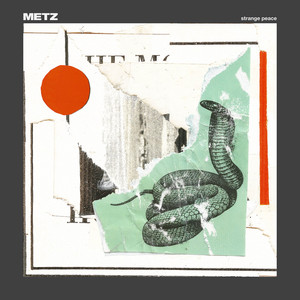 Mess Of Wires by Metz