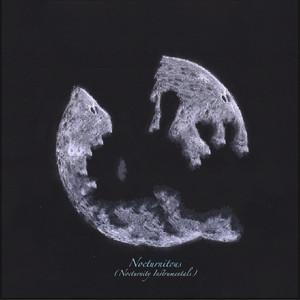 Nocturnitous (Nocturnity Instrumentals) album