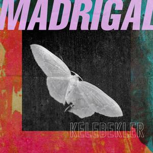 Kelebekler - Madrigal