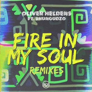 Fire In My Soul (Remixes) (feat. Shungudzo)