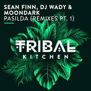 Pasilda - Sean Finn Sundown Radio Edit cover art