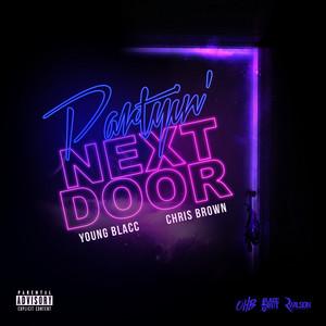 Chris Brown – Party Next Door (Percapella)(Acapella)