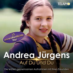 Rosen ohne Dornen Medley 2018 (Duett mit Ireen She... cover art