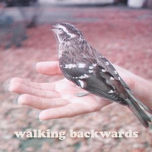Walking Backwards by Diary