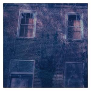 Hollow (feat. Quinn Lewis)