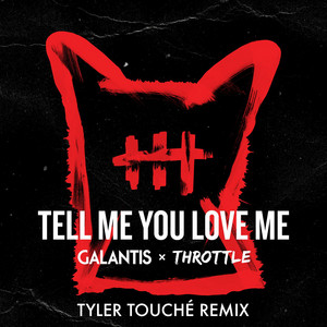 Tell Me You Love Me (Tyler Touché Remix) Albümü