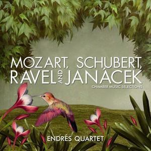 String Quintet in C Major, D. 956: I. Allegro ma non troppo by Endres Quartet, Fritz Kiskalt