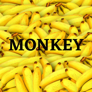Monkey by Sara seu