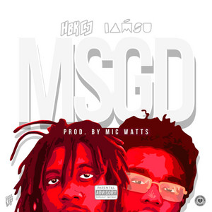 MSGD - Single