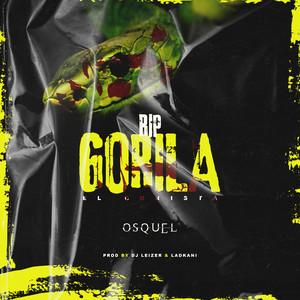 Rip Gorila