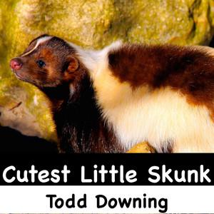 Cutest Little Skunk