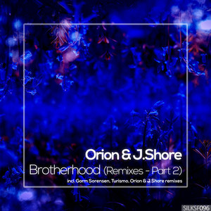 Brotherhood (Remixes, Pt. 2)