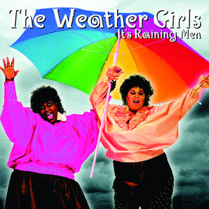 It's Raining Men - Single Version