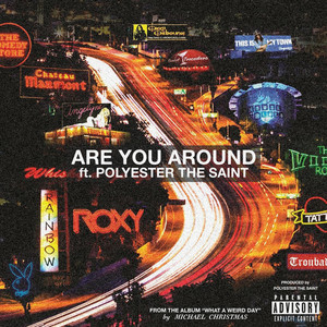 Are You Around (feat. Polyester The Saint)