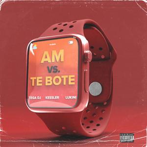 Am vs. Te Bote (Remix)