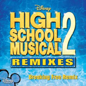Breaking Free (Remix)