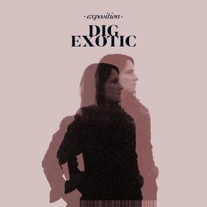Exposition album
