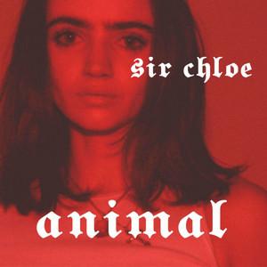 Animal - Sir Chloe