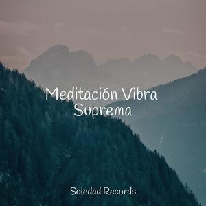 Meditación Vibra Suprema