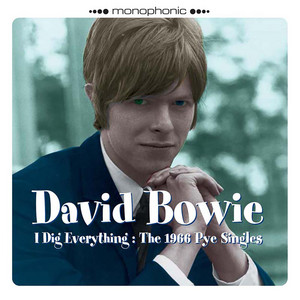 I Dig Everything: The 1966 Pye Singles