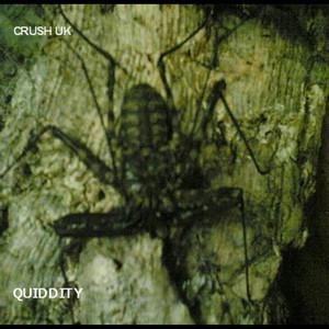 Quiddity album