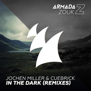 In The Dark (Remixes)