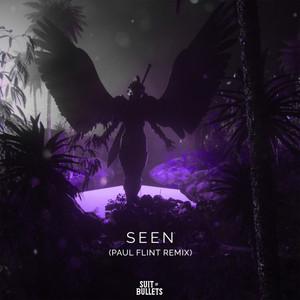 Seen (Paul Flint Remix)