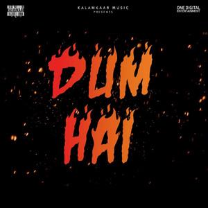 Dum Hai cover art
