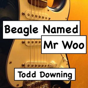 Beagle Named Mr Woo