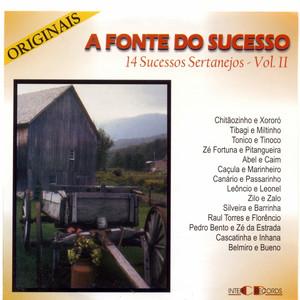 A Fonte do Sucesso: 14 Sucessos Sertanejos, Vol. 2
