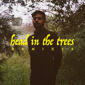 Head In The Trees (Remixes)