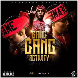 Gang Gang Activity